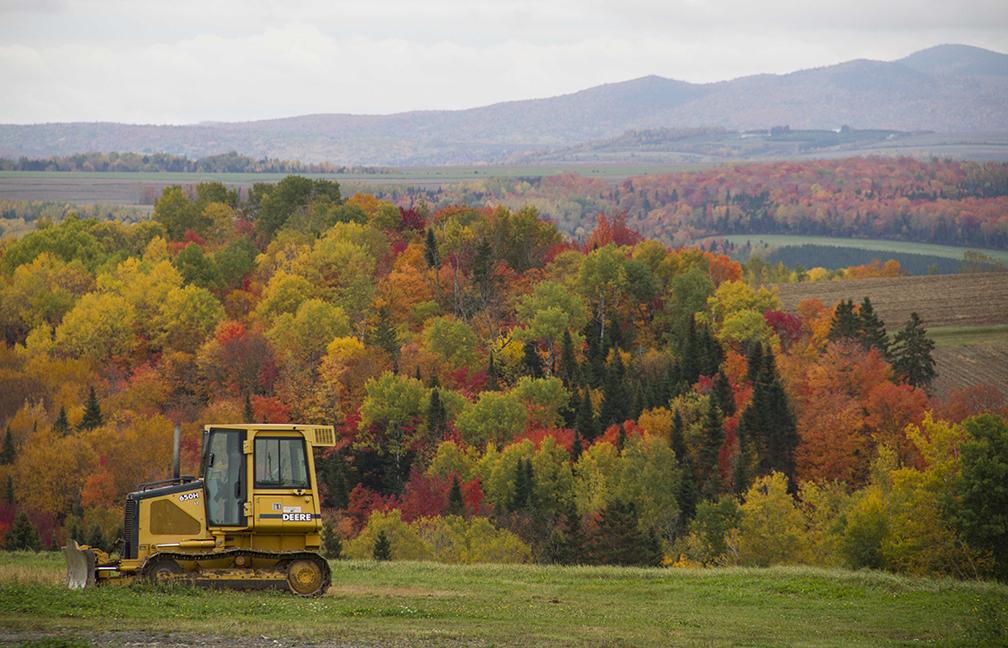 Fall Landscape, New Brunswick