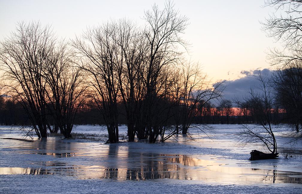 Petrie Island Sunset, Ontario