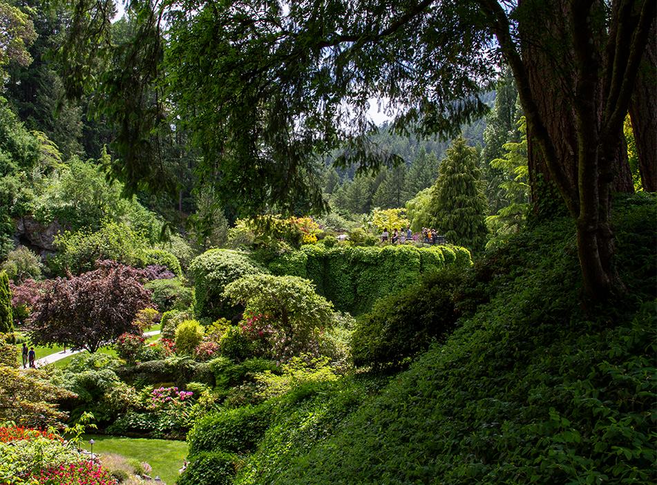 The Sunken Garden, Butchart Gardens, BC