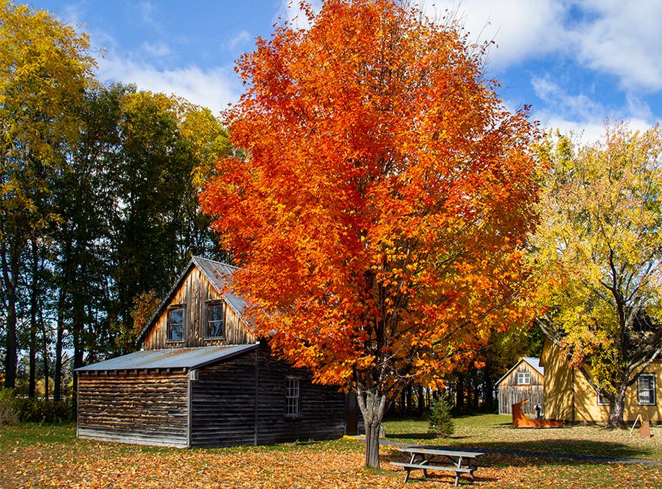 Fall Splendor, Cumberland Heritage Village Museum