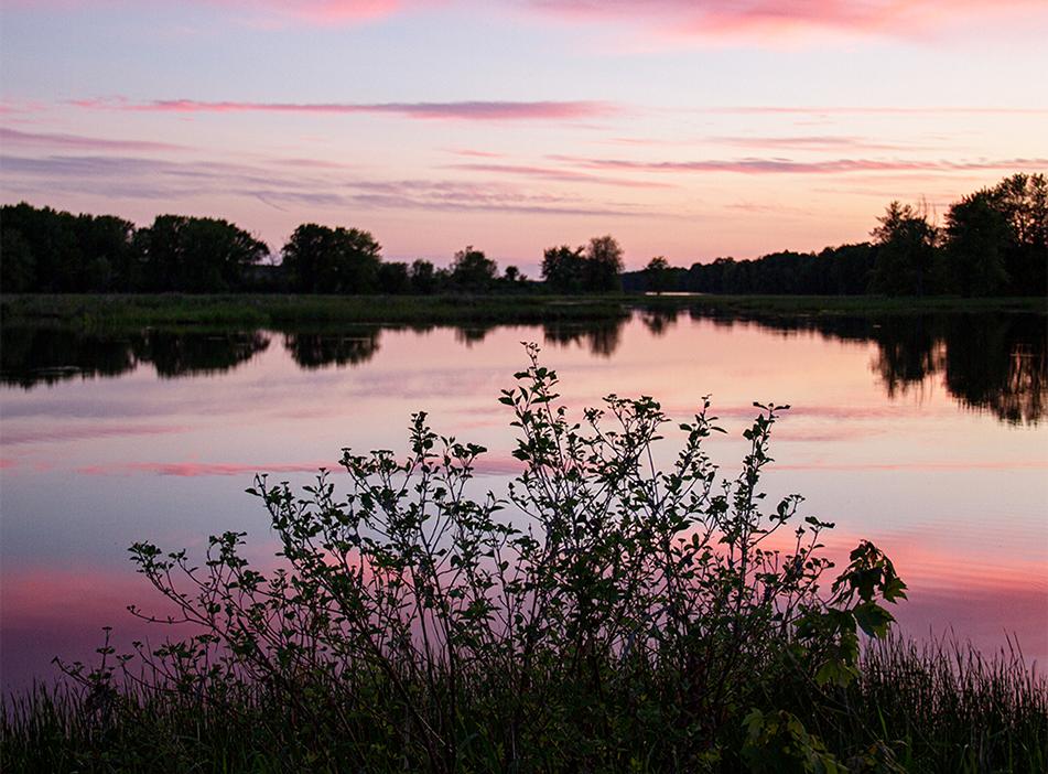 Pink Sky, Petrie Island, Ontario